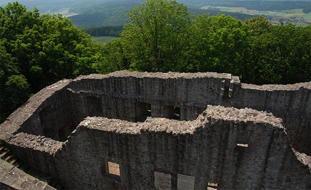 Burgruine-Hauneck