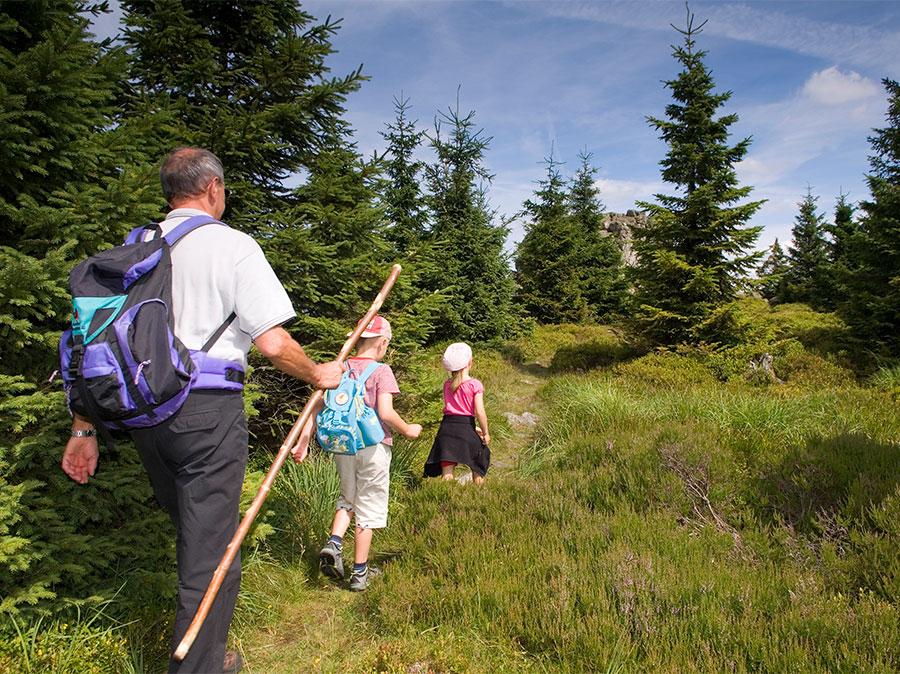 Stempelwandern-mit-der-Harzer-Wandernadel