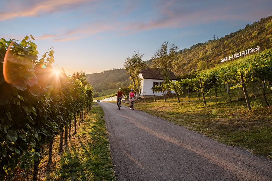 RADWANDERN_Saale-Radweg_©Saale-Unstut-Tourismus-e.-V