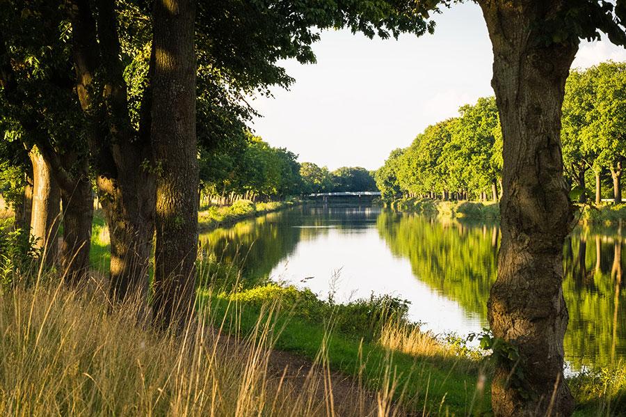 Dortmund-Ems-Kanal-bei-Lingen,-Natur—Foto-Helmut-Kramer-HK150923307